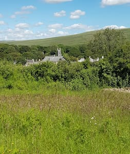A cat lover's paradise in the heart of Dartmoor