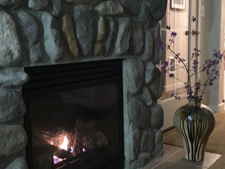 Propane feed fireplace