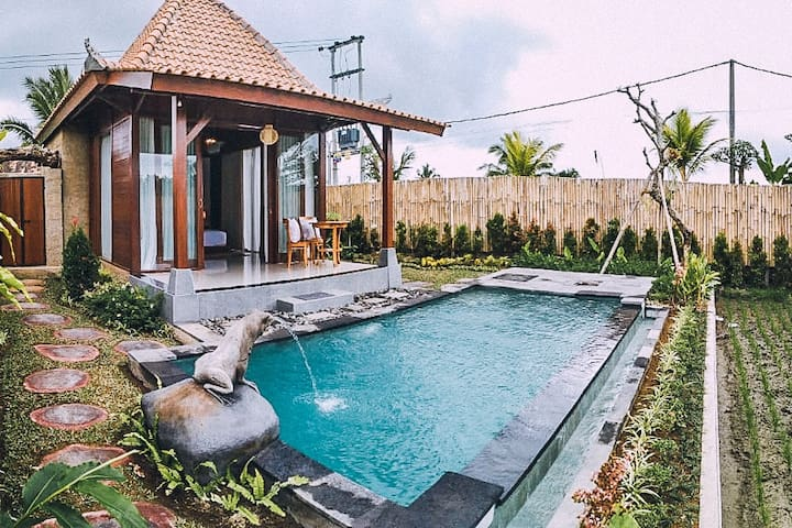 1 BR Villa with Private Pool and Bali Rice Fields