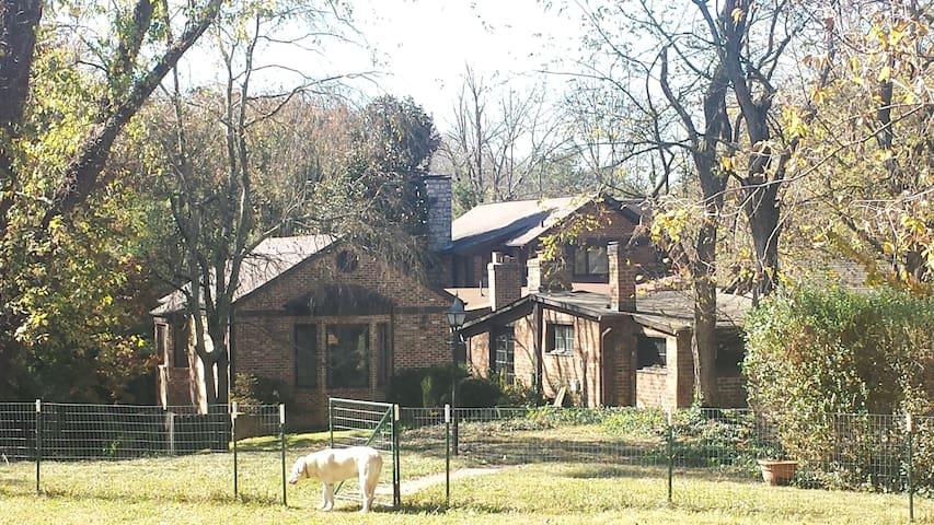 Cabin at Windy Hill