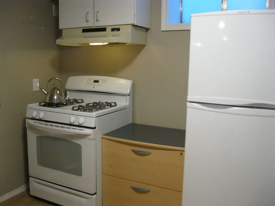 Kitchen gas stove and fridge.