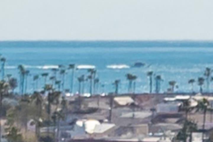 NEWPORT OCEAN CLUB CONDO 2BD 2BA OCEAN VIEWWWWWWW!
