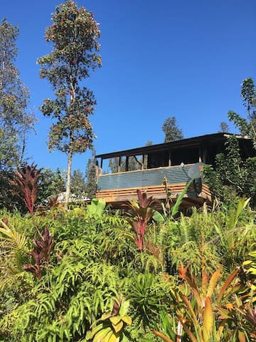 HoloHolo (Upstairs Cabin) - Pāhoa - Houten huisje
