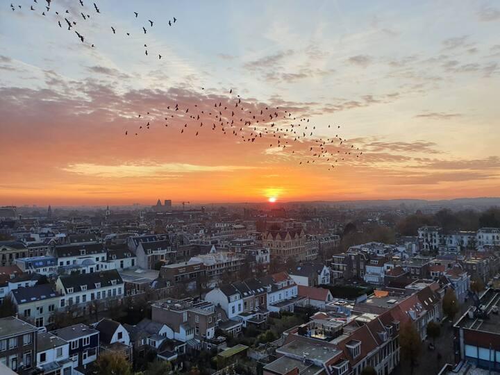 Appartement mooiste uitzicht in Haarlem