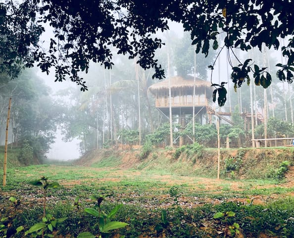 Ground for entertaining activities. Shooting airgun, Archery, Rings, Football, Badminton, Chessboard, mountain bicycles, etc. will be provided for guests.