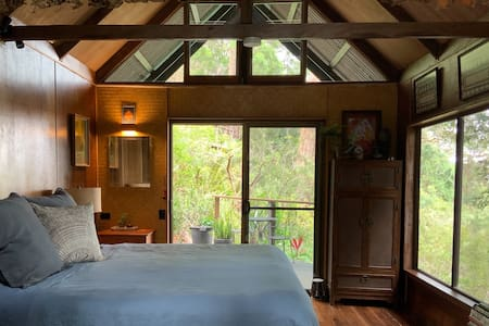 Newly Renovated Private Eco Rainforest Cabin