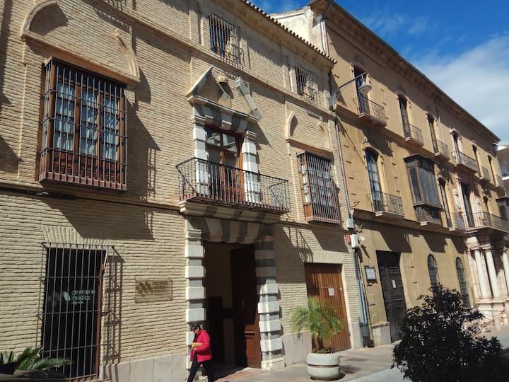 Emblematic Apartment in Villadarias M. Palace