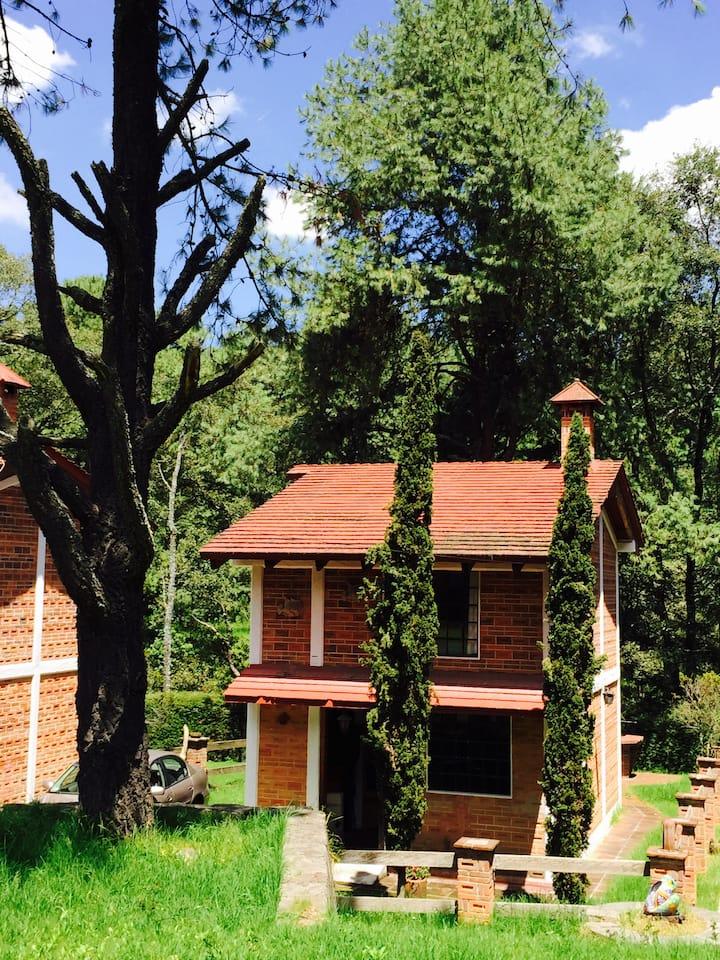 Hermosa cabaña en el bosque cerca CDMX JILOTZINGO