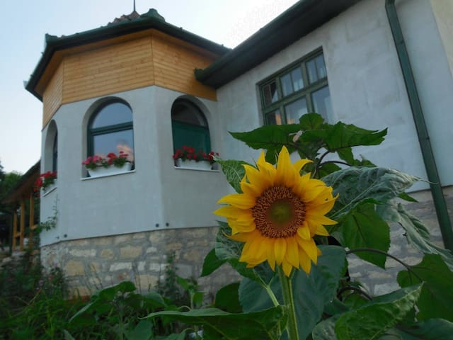 Feel Home in Várfalva - Moldovenești - House