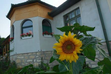 Feel Home in Várfalva - House