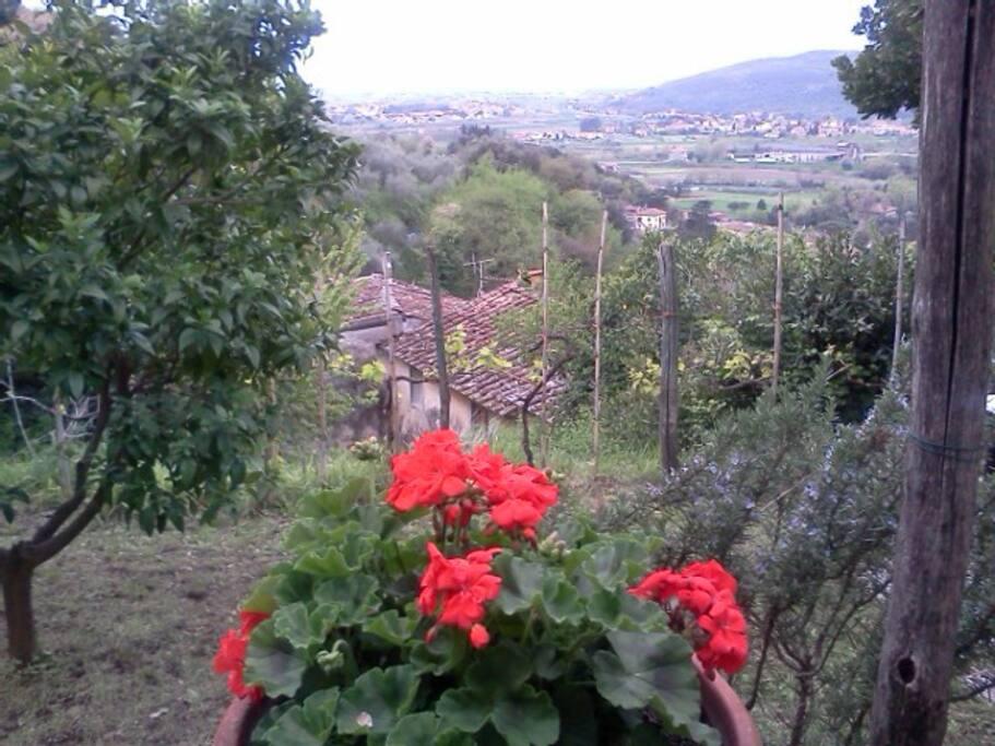 giardino e panorma