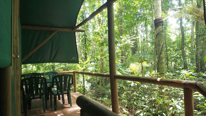 Daintree Crocodylus - Quandong Safari Hut
