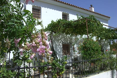 Beautiful old Andalusian farmhouse with large pool - Los Herreras