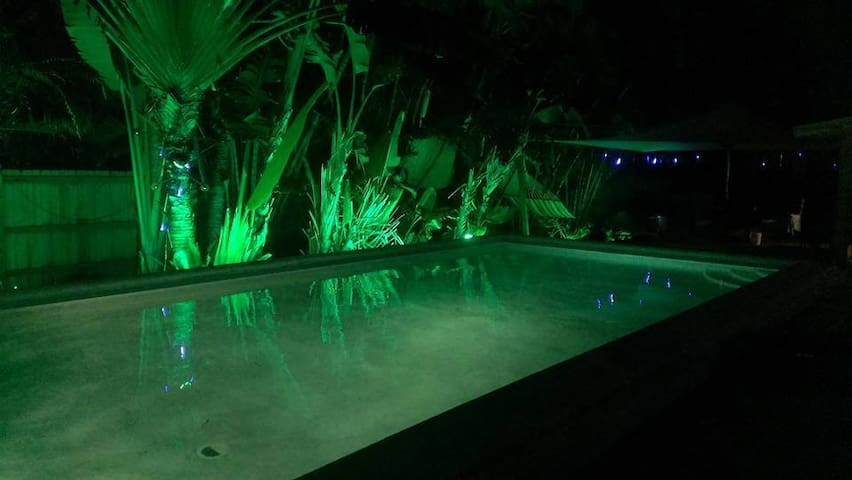 TROPICAL POOL SUITE in Wilton Manors! - Wilton Manors - Dom
