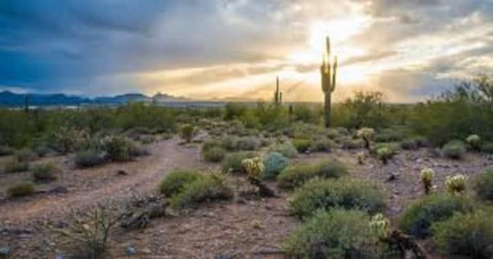 Bright 2bdrm North Scottsdale condo  - location!!!