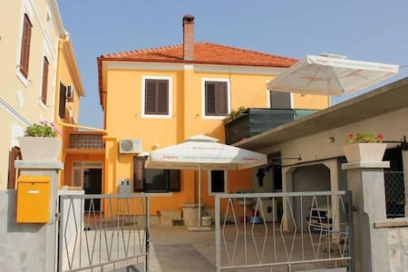 One bedroom apartment with air-conditioning Pašman (A-8295-a) - Pašman