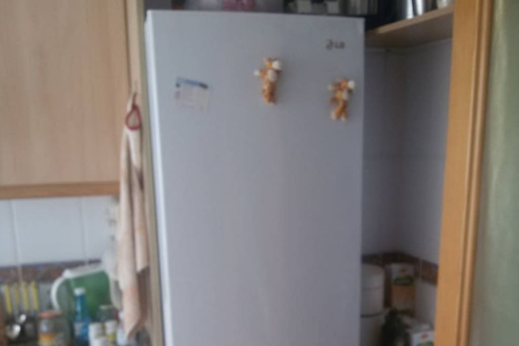 kitchen´s fridge