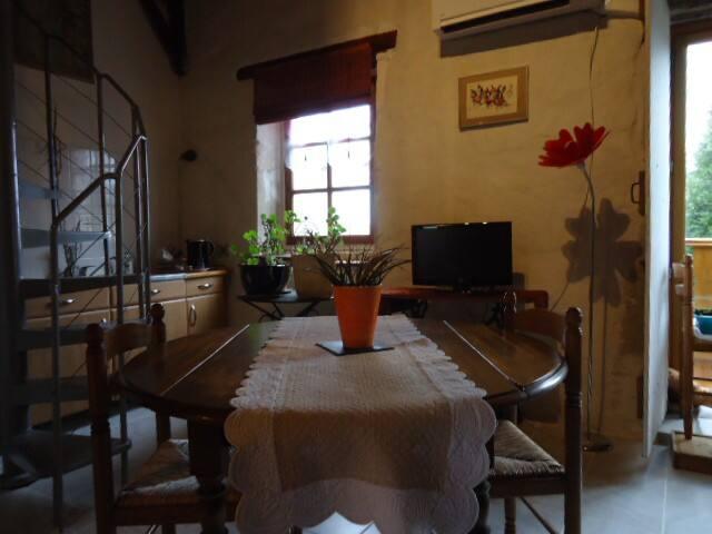 """"""" La Galinette""""Chambre de 36m2"""
