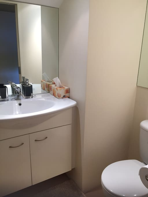 Hand basin and toilet shared with one other guest