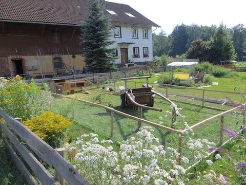 Ferien im Allgäu auf dem Bauernhof, Reiturlaub