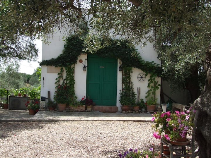 Casa Tranquillo Villa with private plunge pool