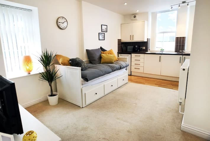 Entire 1 bedroom modern flat, Cardiff