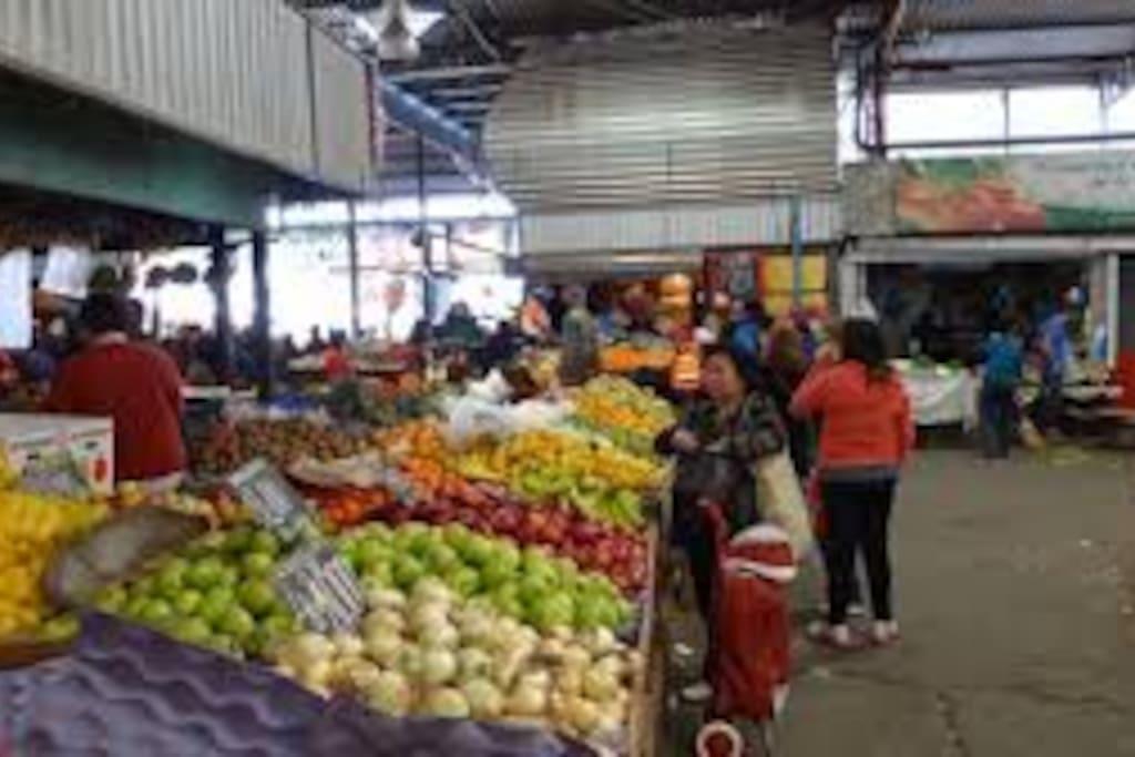 Vega Central ( 15 minutos )