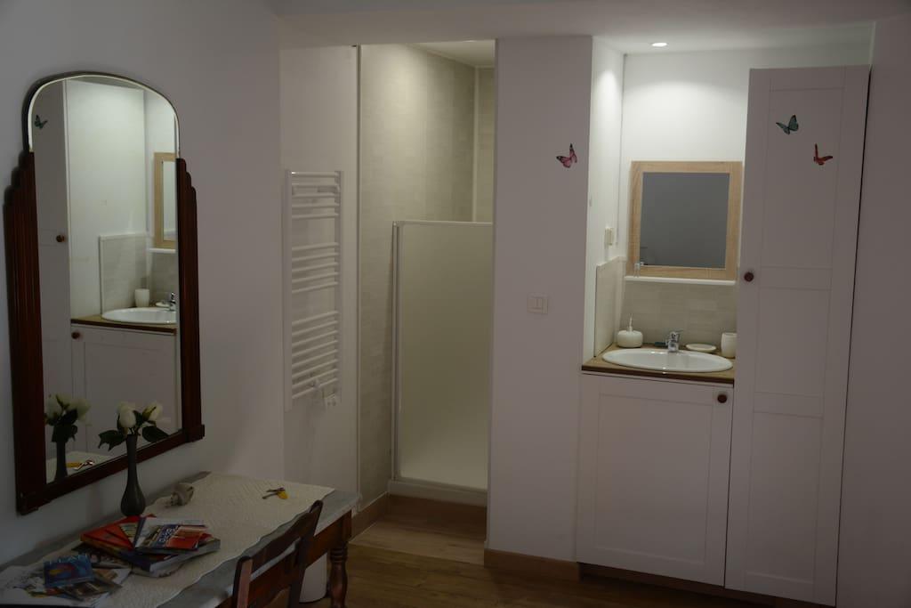 Douche et lavabo intégrés