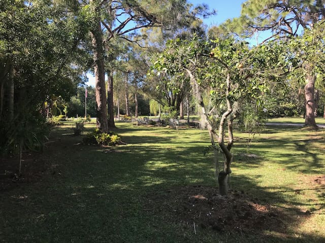 1.3ac. 'Shady Pines' wtrfront w pier, pool & cage+