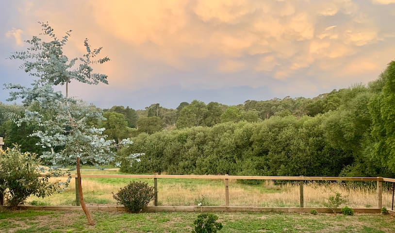 Dog friendly accommodation with lovely gardens