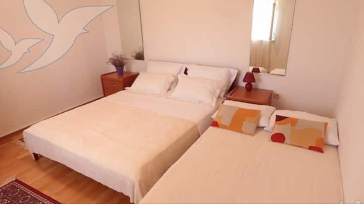 Adriatic guestroom