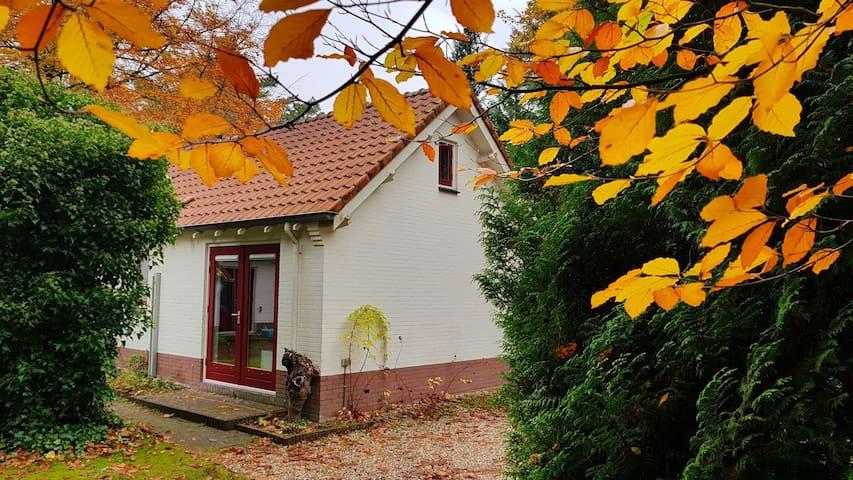 Geniet van Vaassense natuur bij huisje met sauna!