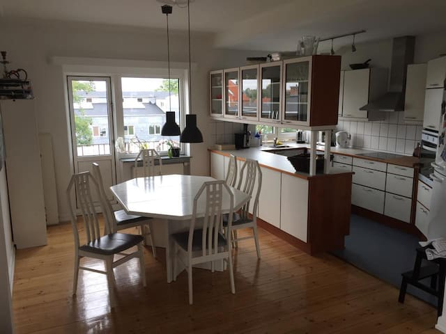 Big and cozy apartment in Gentofte (Copenhagen) - Gentofte - Flat