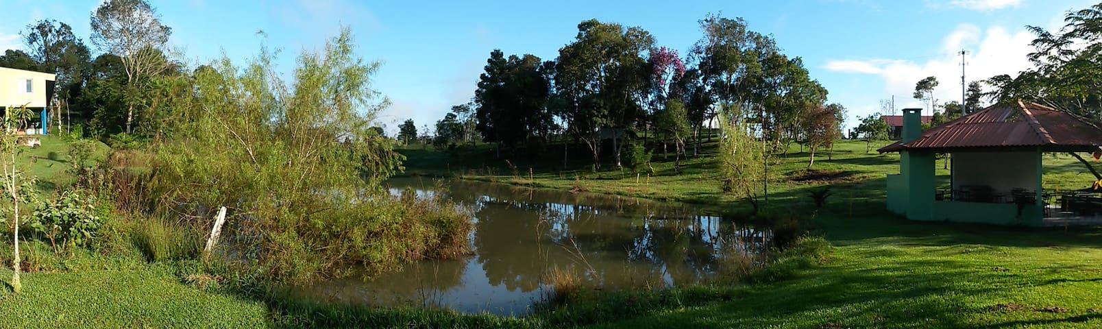 Paz na Lagoa da Música... - Campina Grande do Sul