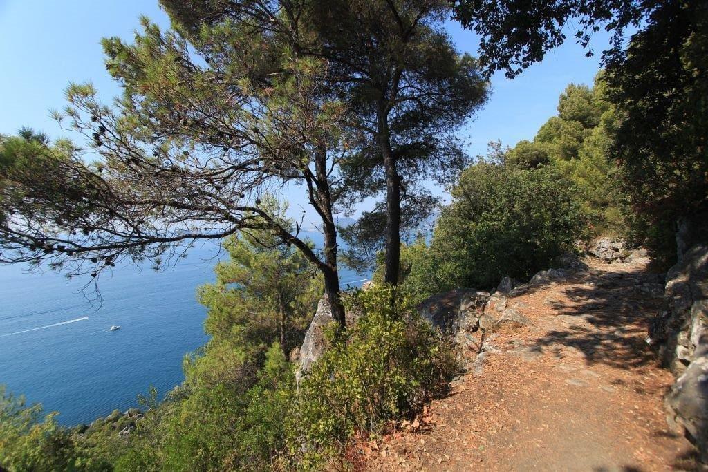2. Sentiero che parte da casa per Tellaro /A trail that goes from house to Tellaro