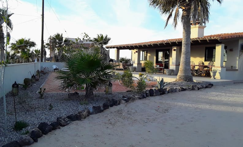 Front yard with large porch and patio with firepit and loungers