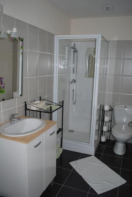 La salle de bian avec WC et douche
