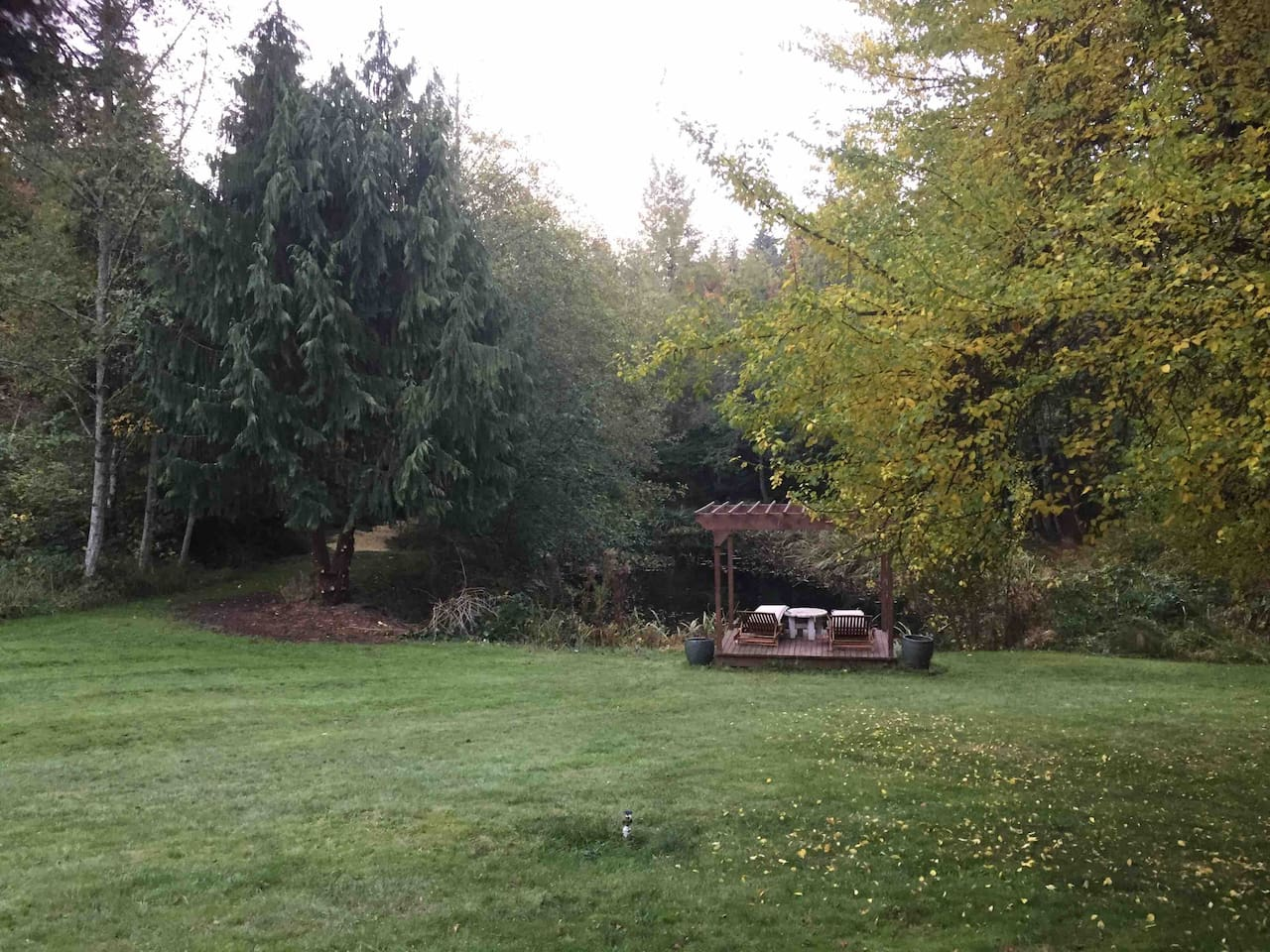 This is the pond on our property with a wooden deck/pergola to lounge and enjoy the serenity of the pond life all around.