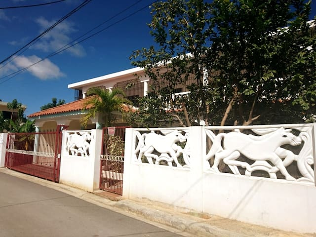 Furnished apartment in Las Terrenas