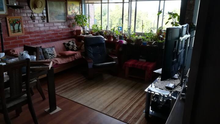 Wilton Apartment