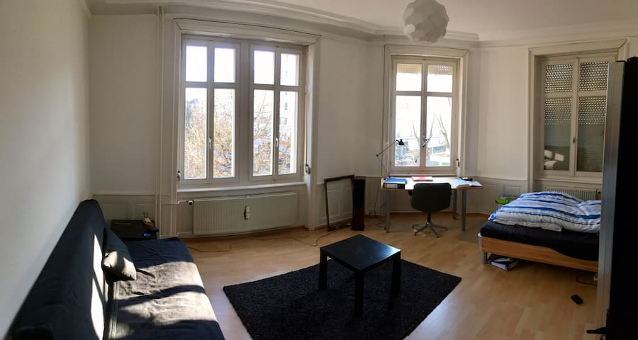 Central apartment near Baselworld - Bazel - Appartement