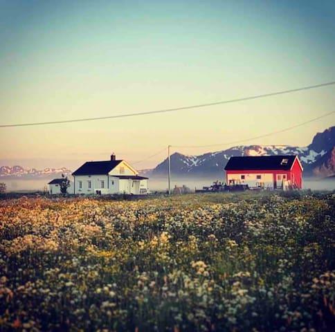 Gårdstun ved havet og golfbanen, midt i Lofoten ✨🤩