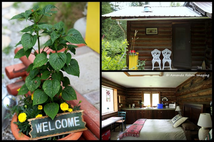 Farm Stay in a Log Cabin with Beautiful Gardens