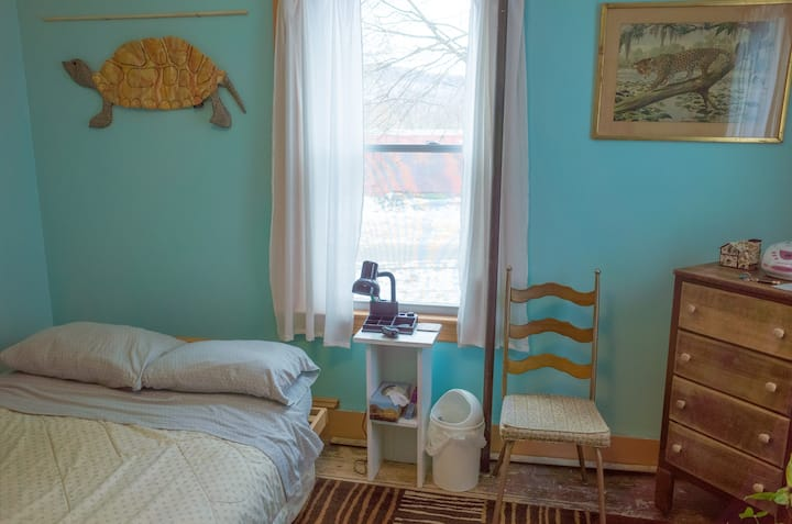 Nice Private Room, Artist Home, WIFI, Walk to Town