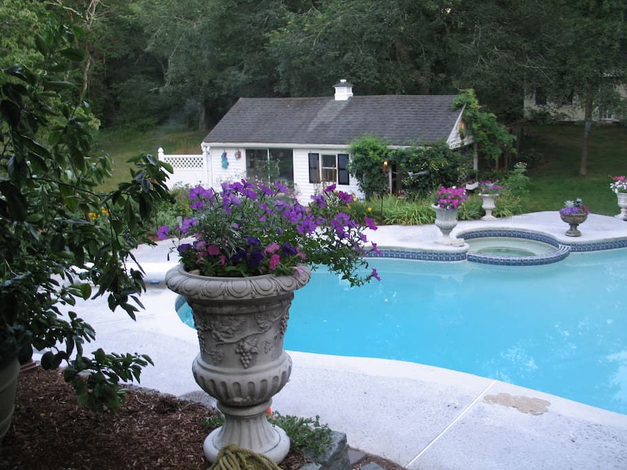 Pool View from Upper Level