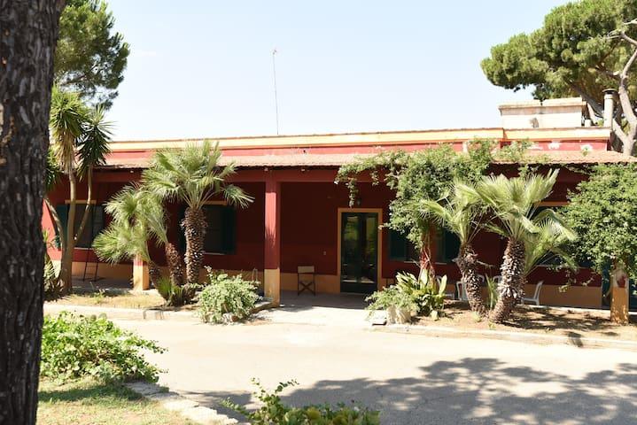 Masseria La Torrata - casa vacanze - Palagianello - Byt