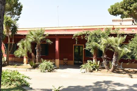 Masseria La Torrata - casa vacanze - Palagianello - Flat
