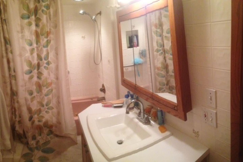 Bathroom to basement 1 BR