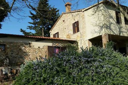 Appartamento nella Maremma Toscana al PodereRegina - Montorsaio - 아파트