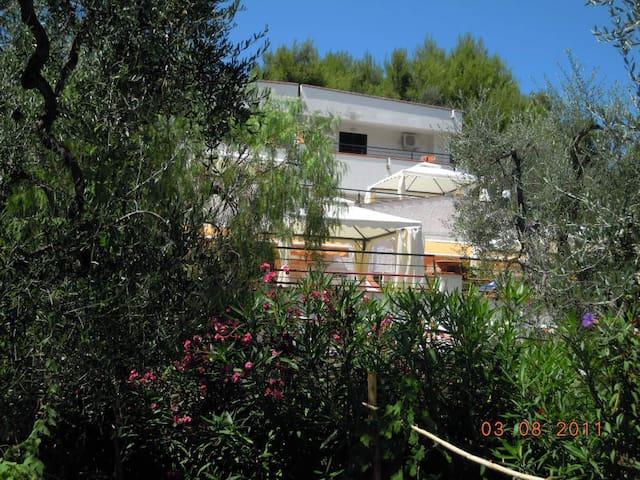 appartamento viola - Macchia di Mauro-pilone - Appartement
